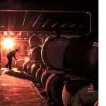Los 7 mejores whiskies escoceses de 2021