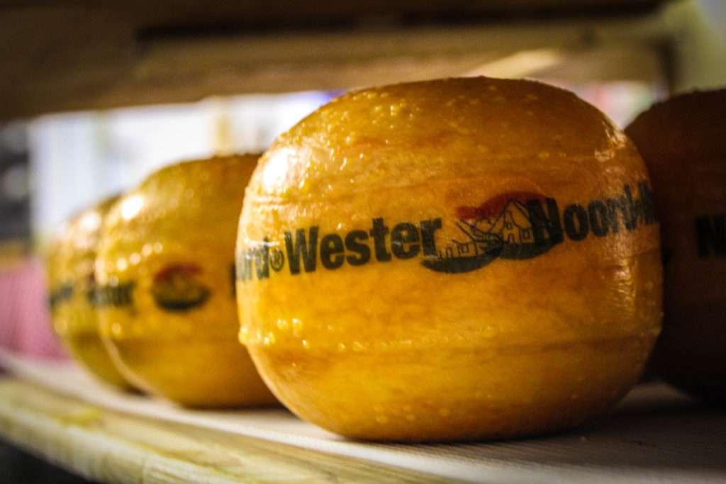 5 mejores quesos holandeses